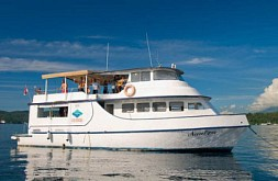 Eco Divers Resort Lembeh - Day Liveaboard